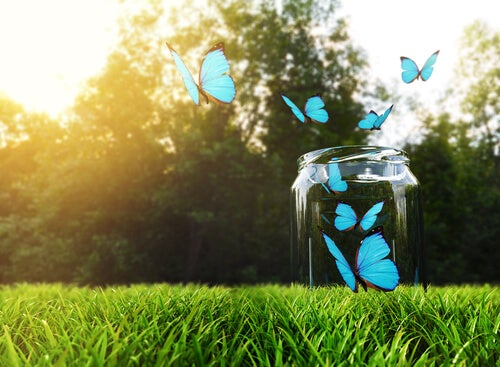 Butelka szczęścia: jak ją zrobić i jak działa?