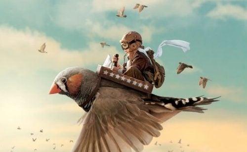 Chłopiec lecący na ptaku