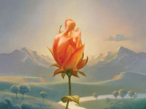 Cytaty Osho - róża w górach