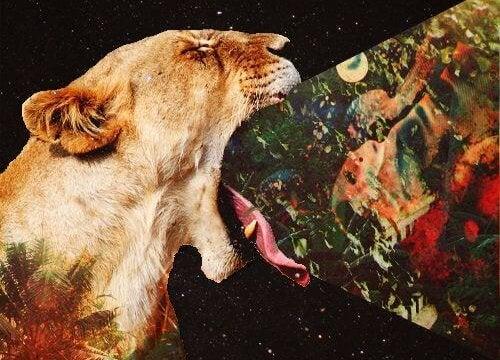 Ryczący lew - wszechświat i prawda absolutna.