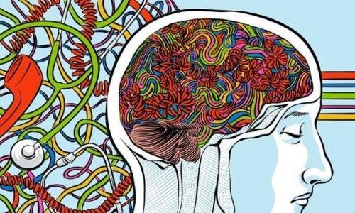 Nerw błędny w mózgu