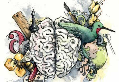 Inteligencja - jaki jej rodzaj dominuje u ciebie?