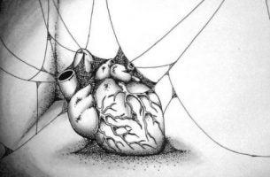 Egoizm - Serce w pajęczynie