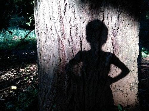 Cień chłopca na drzewie.