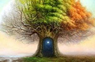 drzewo z drzwiami w pniu