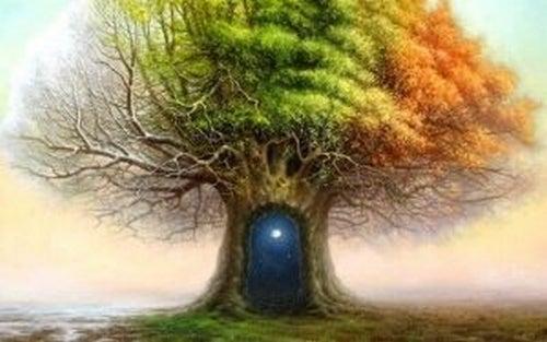 Test drzewa Karla Kocha – niezwykłe zjawisko