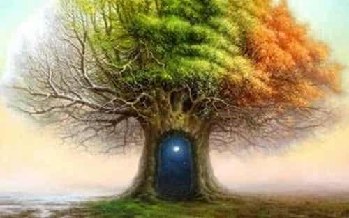 Test drzewa Karla Kocha - niezwykłe zjawisko