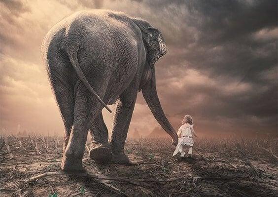 Dziewczynka prowadząca słonia.
