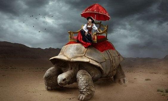 Kobieta na żółwiu.