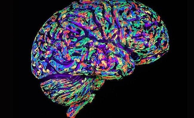 Kolorowy umysł.