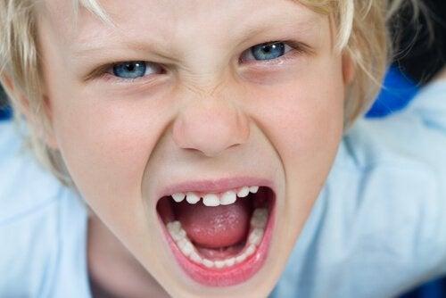 Krzyczące dziecko - brak limitów