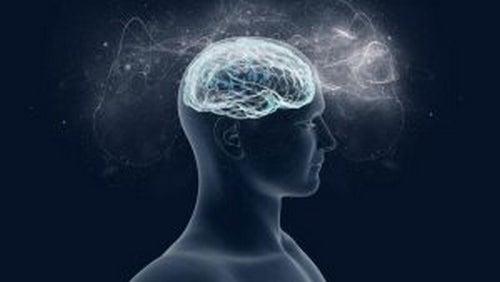 Magnez: przyjaciel naszego mózgu i dobrego samopoczucia