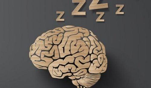 Śpiący mózg
