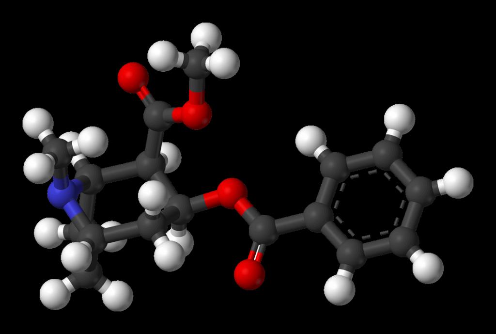 Skład chemiczny kokainy