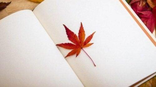 Trudne chwile - liści na pustej stronie w dzienniku