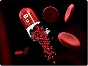 Witamina B12 i wpływ jej niedoboru na mózg