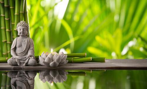 Budda i kwiat lotosu - Feng shui
