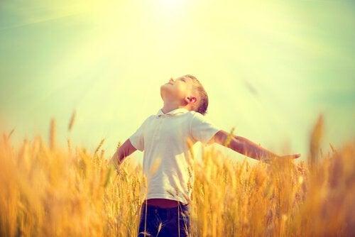 Chłopiec na polu.