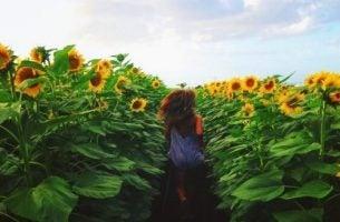 Niepowtarzalne chwile - dziewczyna biegnąca przez pole słoneczników.