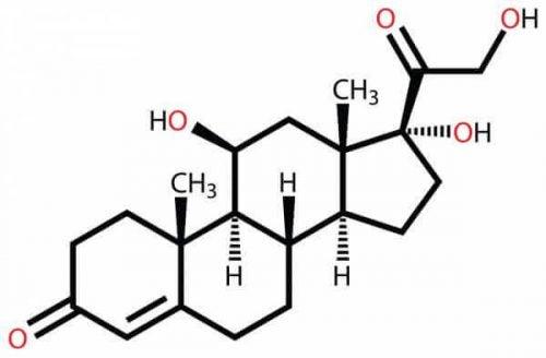 Kortyzol - równanie chemiczne