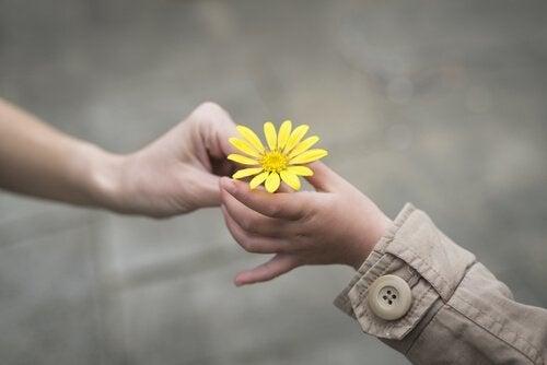 Kwiatek - życzliwość