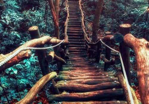 Podążaj naprzód, a Twój szlak zacznie się pojawiać tuż przed Tobą