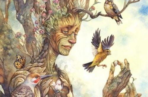 Drzewa i ich mądrość.