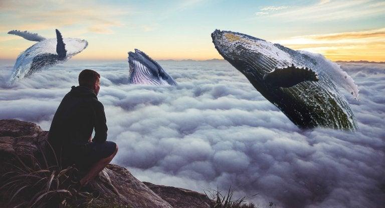 mężczyzna i wieloryby - uczucie strachu