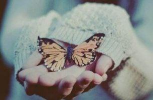 Motyl w dłoni.