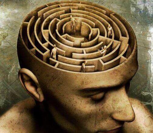 mózg mężczyzny jako labirynt