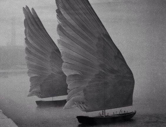 Żagle - skrzydła