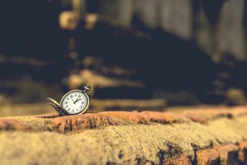 Zegarek na murze.