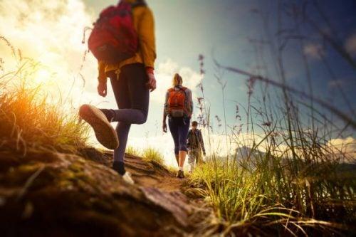 Piesze wędrówki - Grupa ludzi spaceruje po górach