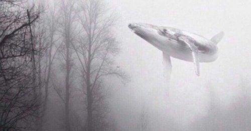 Niebieski wieloryb latający w lesie