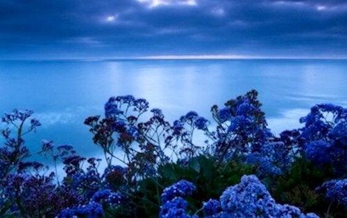 Kolor, który redukuje stres: odcień spokoju