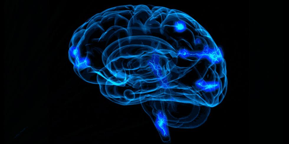 Mózg - neurony.