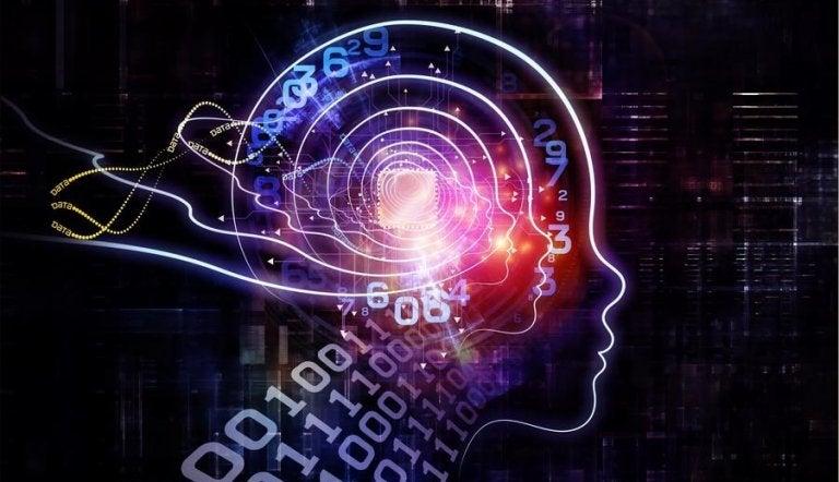 mózg z kodami