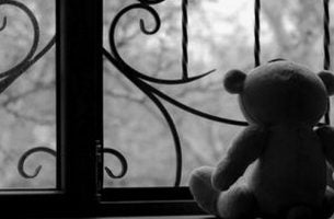 Miś przy oknie - żal po utracie bliskiej osoby