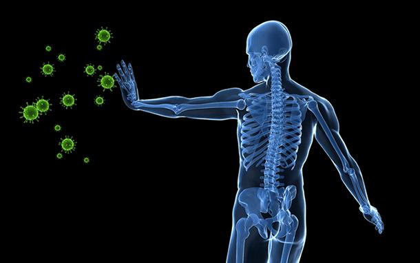 ciało odpowiadające na wirusy
