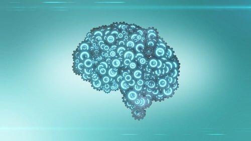 Mechanizmy w mózgu
