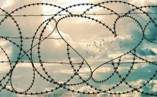Drut kolczasty i serce - bolesne związki