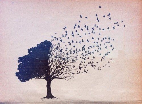 drzewo zmieniające się w ptaki