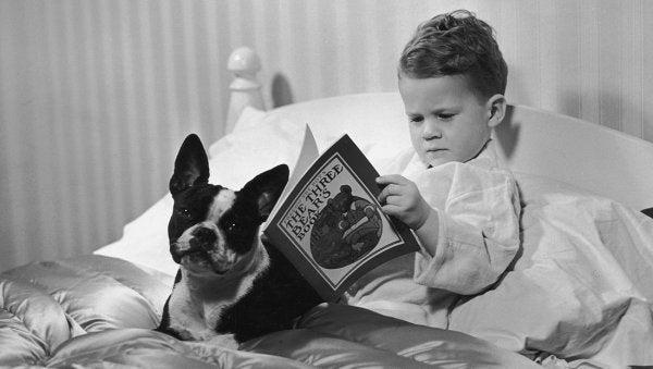 Chłopiec czytający w łóżku.