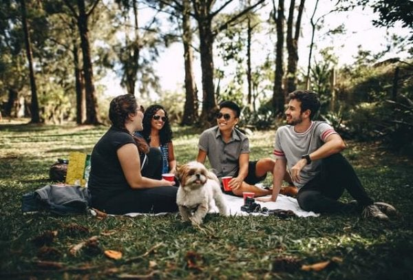 Grupa przyjaciół w parku.