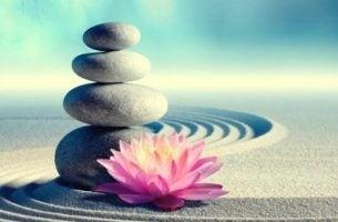 Przykazania zen - kamyki i kwiat lotosu.