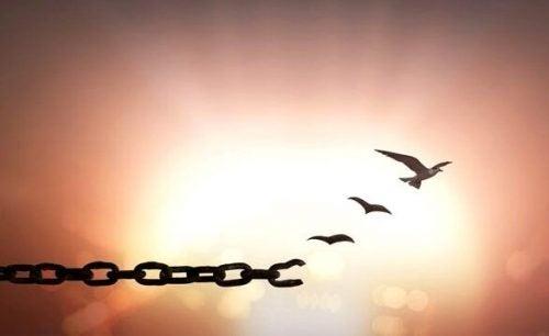 Wybaczenie - 7 zdań, które pomogą Ci je odnaleźć