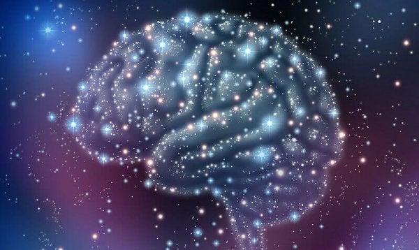 Twój mózg - obwód przyjemności.