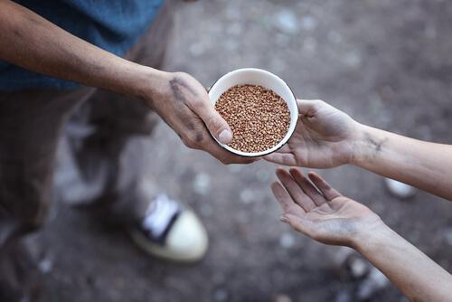 Pomoc - podawanie miski jedzenia