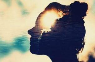 Magnetyczne umysły - profil kobiety.