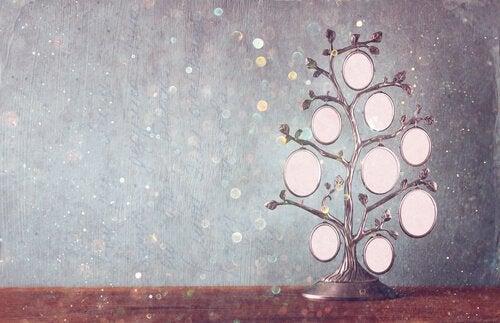 Drzewo genealogiczne – narzędzie do rozwoju i uzdrowienia